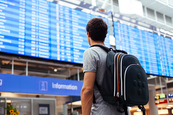 This Is How You Can Get Cheap Flights