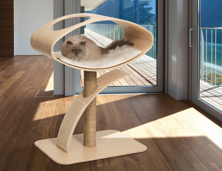 Why Cat Furniture Are Essential